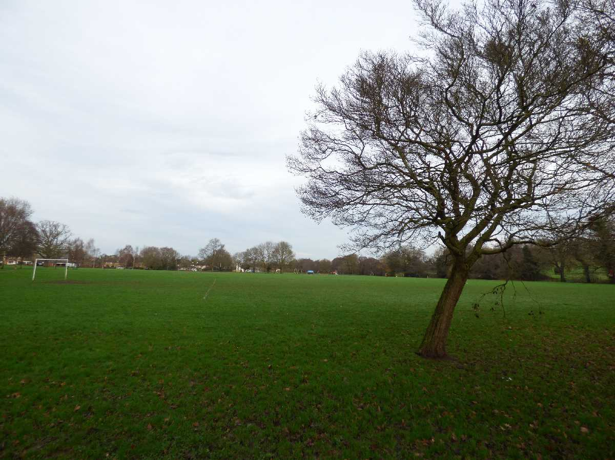 Elmdon Park, Solihull - A wonderful open space!