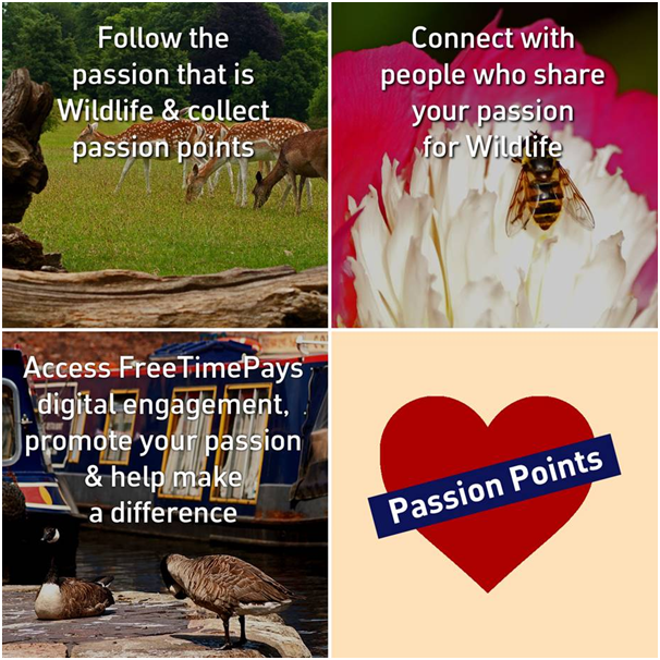 Are you passionate about wildlife? Join Us!